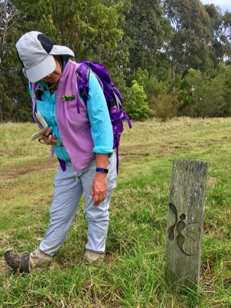 Leader Liz stops to look at a pictorial track sign.