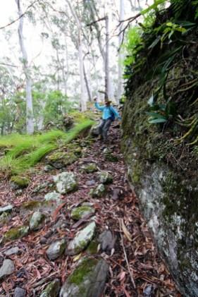 Erika descending into the orchid garden.