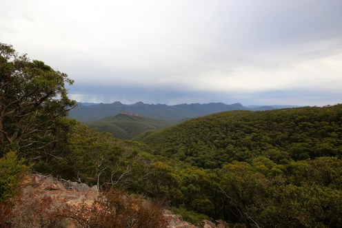 View from Mt William.