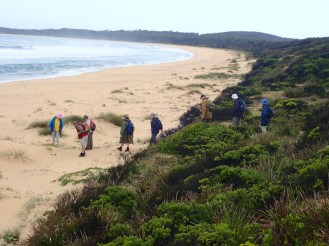 Walkers inspecting animal prints in the dunes