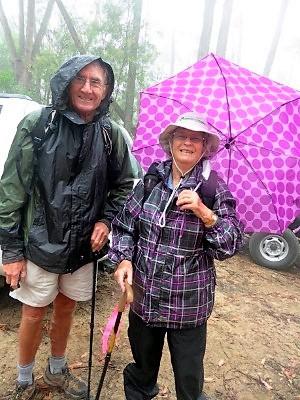 Wet weather leaders