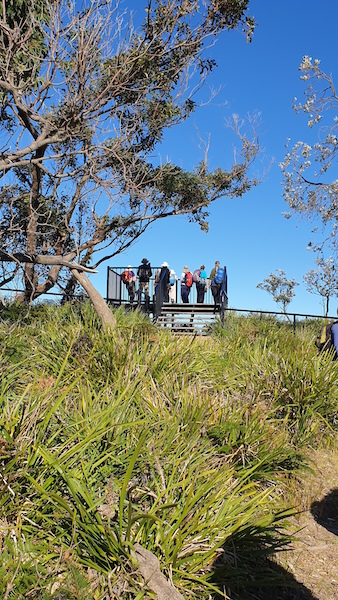 Viewing platform at Snapper Point