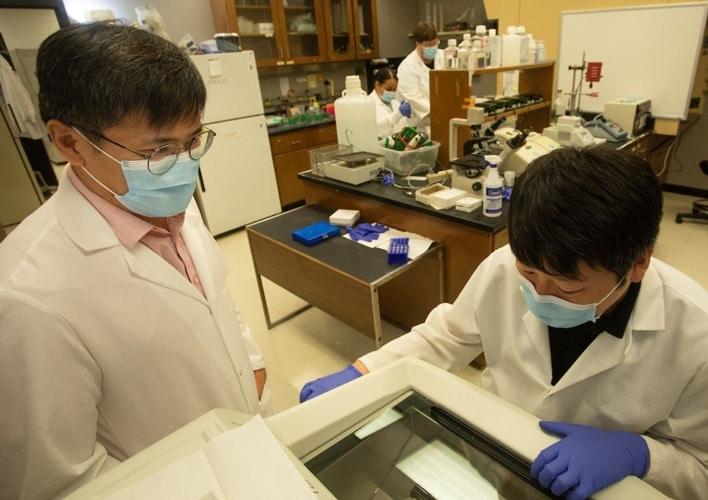 USA Researcher Receives $1.54-Million Grant