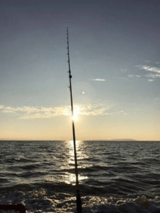 fishing pole highlighted by sunset