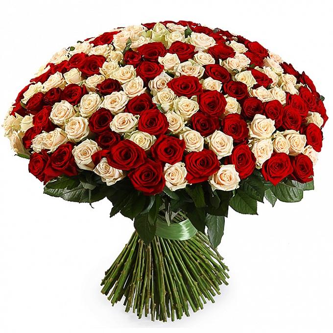 huge_bouquet_201_roses_6-1.jpg