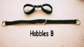 hobbles set B