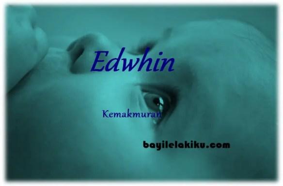 arti nama edwhin