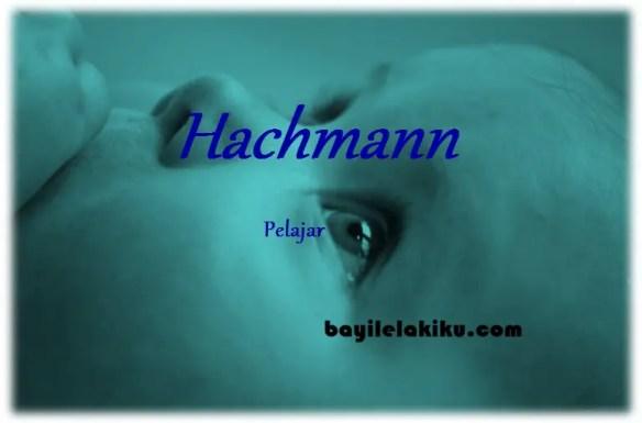 arti nama hachmann