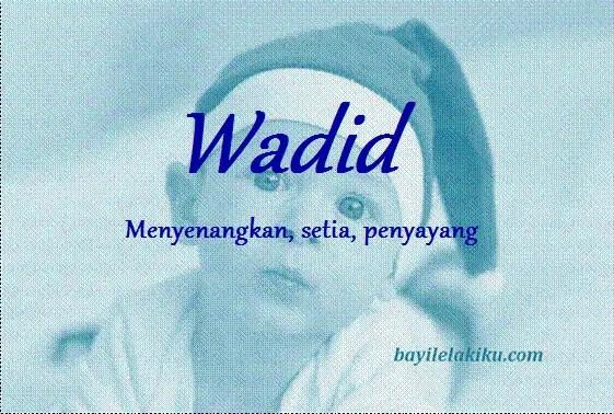 arti nama wadid