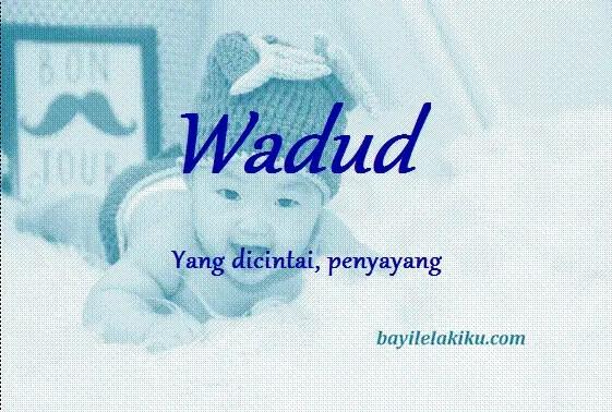 arti nama wadud