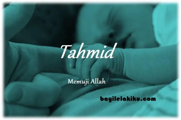 arti nama Tahmid
