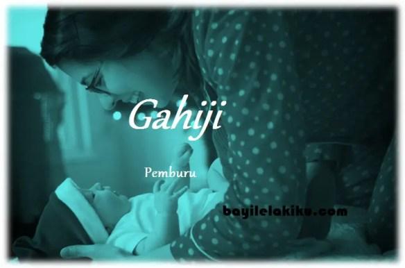 arti nama gahiji