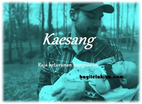 arti nama Kaesang