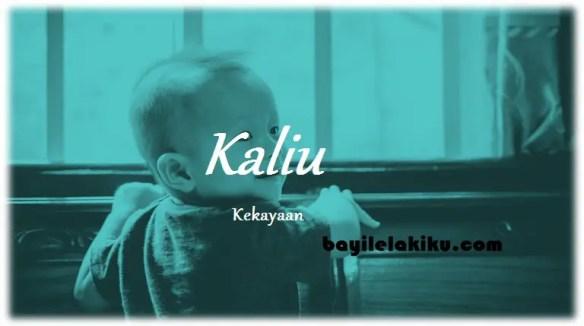 arti nama Kaliu