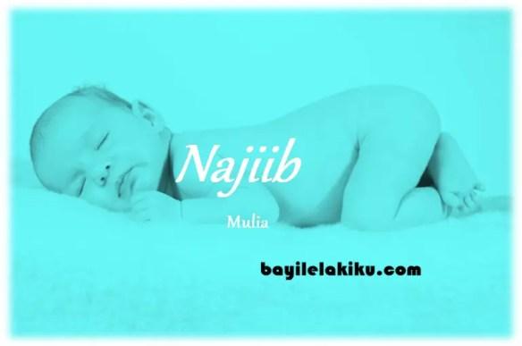 arti nama Najiib