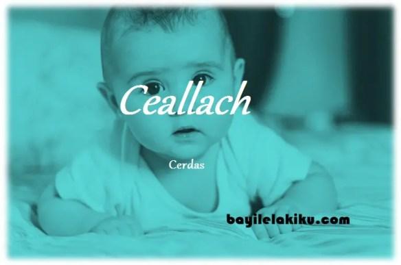 arti nama Ceallach