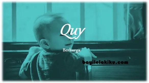 arti nama Quy