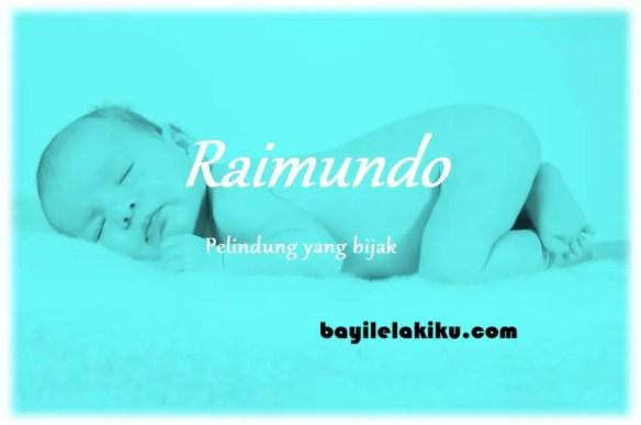 arti nama Raimundo