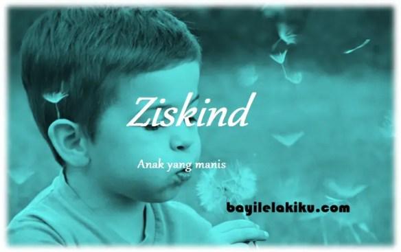arti nama Ziskind