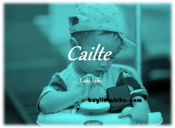 arti nama Cailte