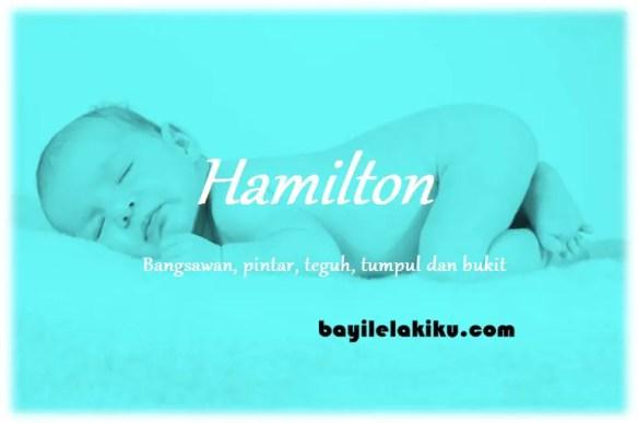 arti nama Hamilton