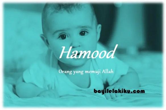 arti nama Hamood