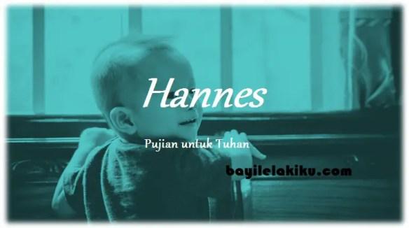 arti nama Hannes