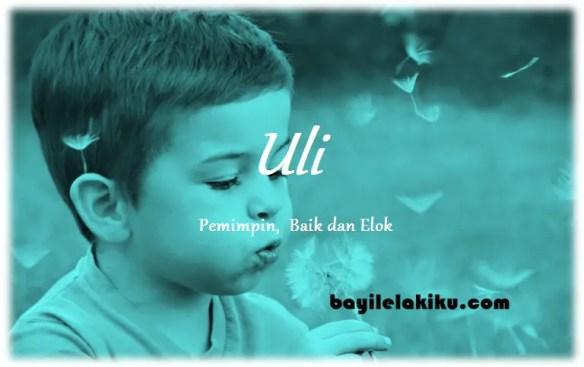 arti nama Uli