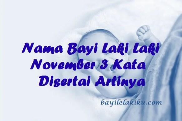 Nama Bayi Laki Laki November