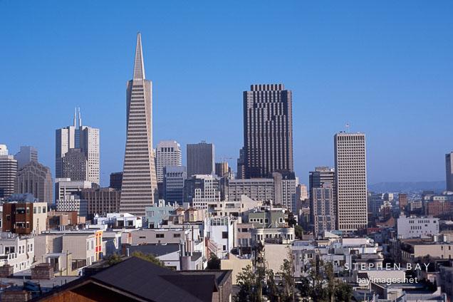 The Transamerica pyramid and the San Francisco skyline. San Francisco, California, USA.