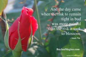 The Risk It Took To Blossom, photo by Baylan Megino