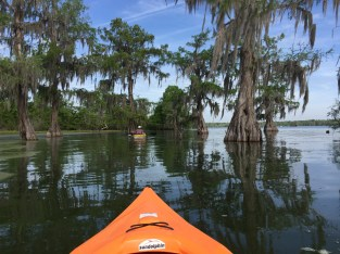 View from Meredith's Kayak