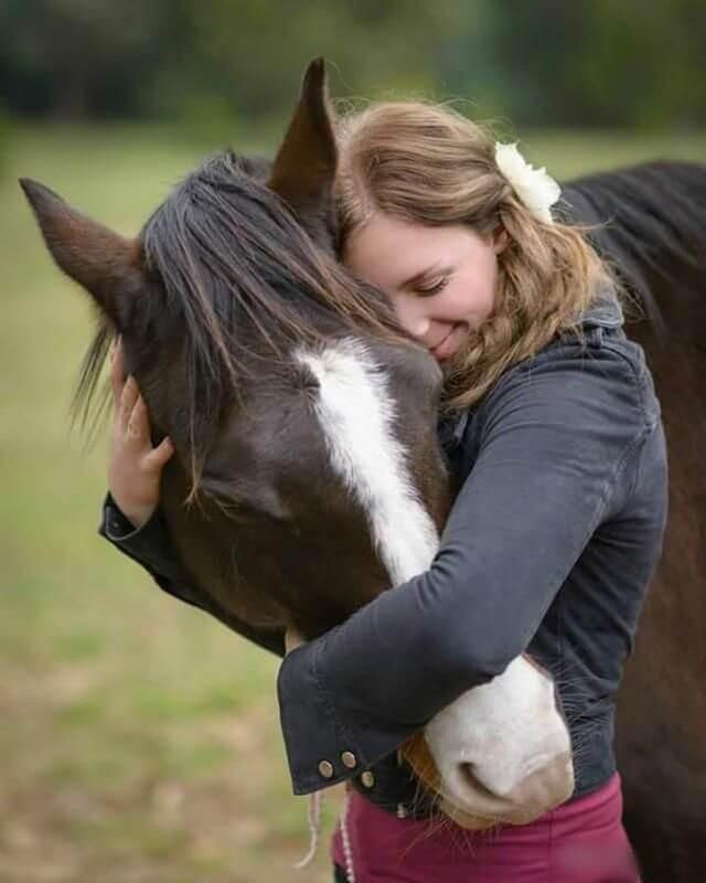 фермеру лошадь