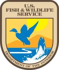 U.S. Fish and Wildlife Service NAWCA Small Grants Program – DEADLINE EXTENDED