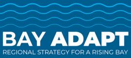 Bay Adapt Leadership Group Urges Adoption of Joint Platform