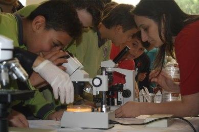 Mikrobiyoloji-Yaz-Okulu-17