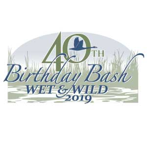 wet & wild logo art