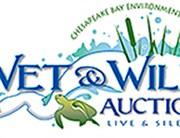 Annual Auction Fundraiser