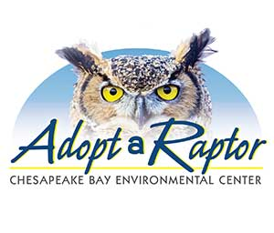 Adopt a Raptor logo
