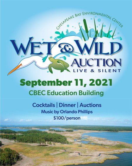 Wet & Wild Action 2021 Poster