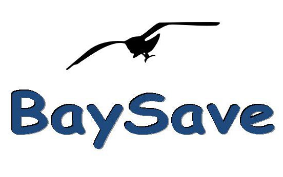 Baysave