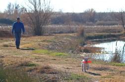 Boatie at pond