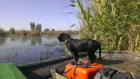 Zoie 12 weeks on boat