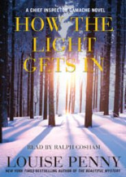 cover image of How the Light Gets In