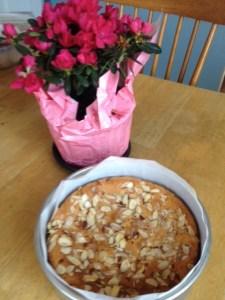 photo of cake still in pan