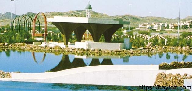 أين تقع مدينة الطائف
