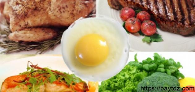أين يوجد البروتين في الطعام