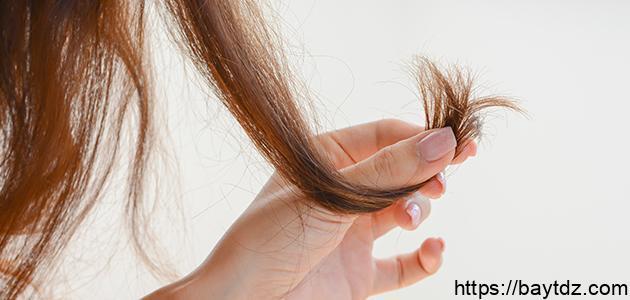 حل لتقصف الشعر
