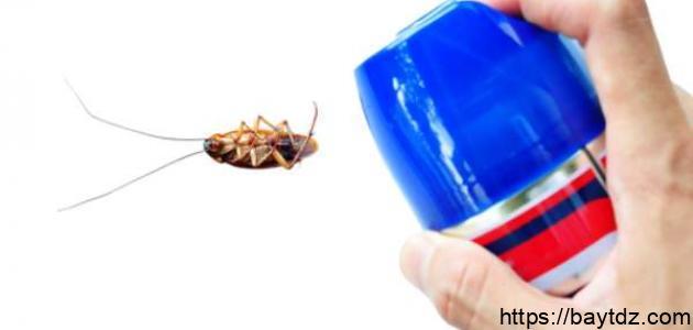 طريقة فعالة للقضاء على الصراصير