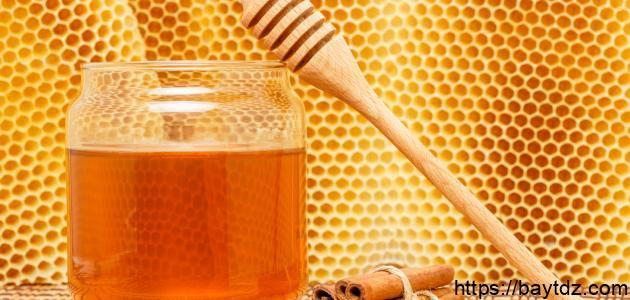 فوائد العسل والقرفة والزنجبيل